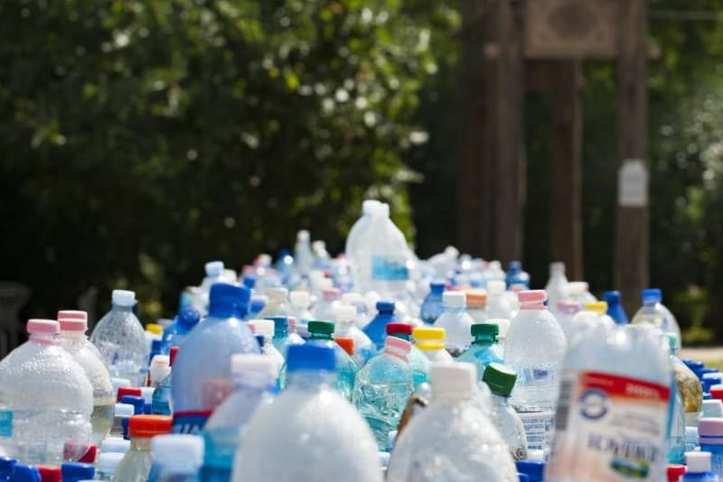 How to Minimise Your Litter Legacy