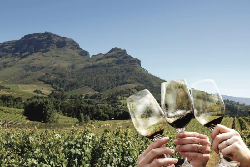 Rewriting Wine 101: Vintages