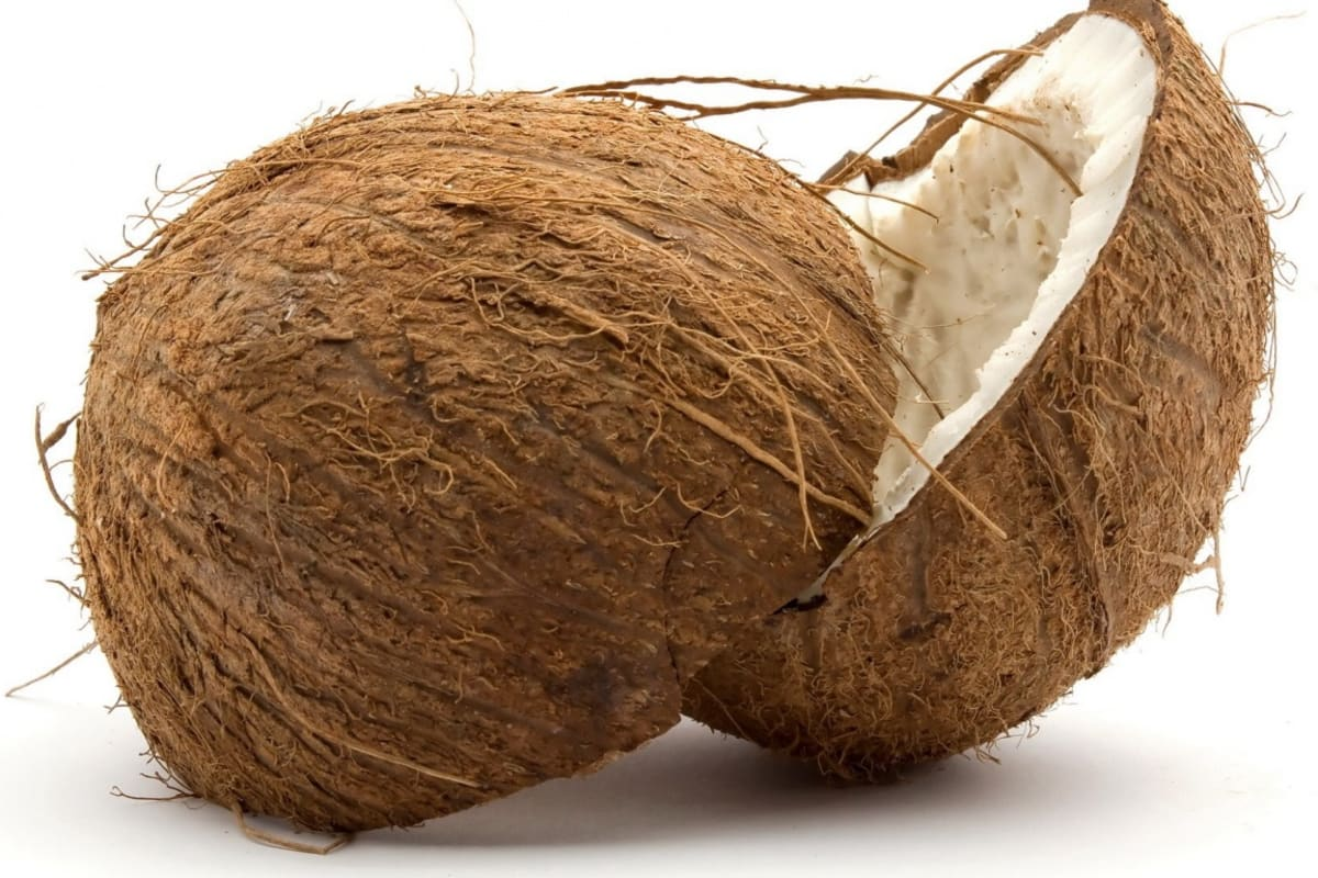 CooCoo for Coconuts!