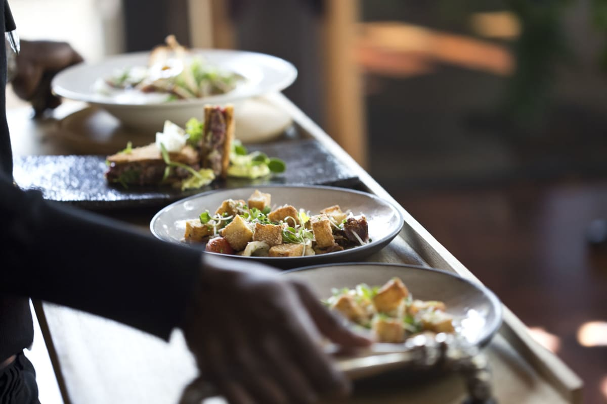Extraordinary Modern South African Food and Wine