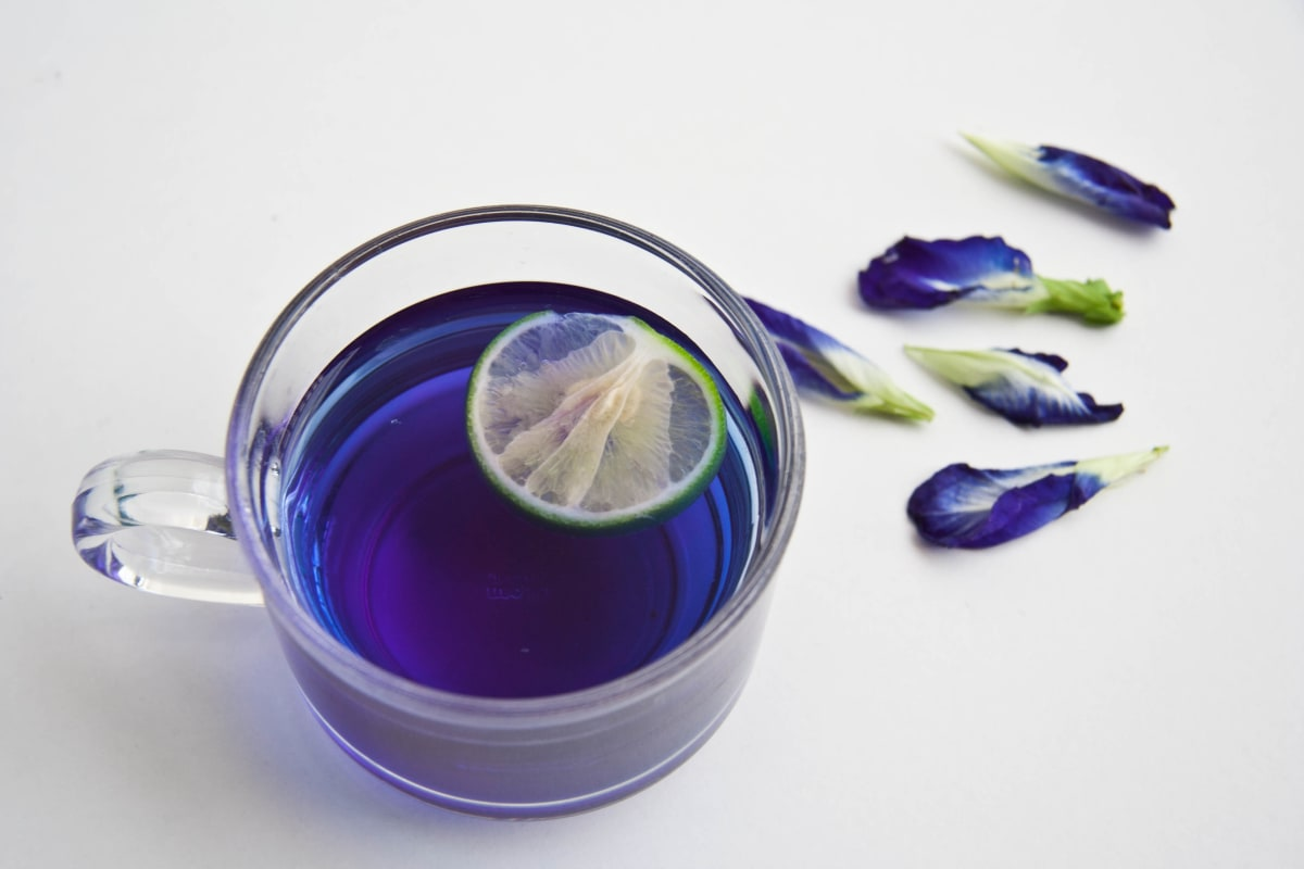 The Secrets of the Butterfly Pea Flower