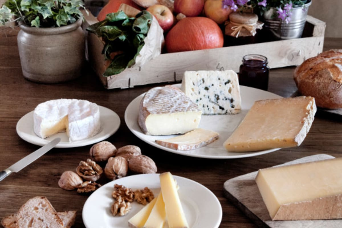 Host a Simple Wine and Cheese Pairing Party #cheeselovers #howto