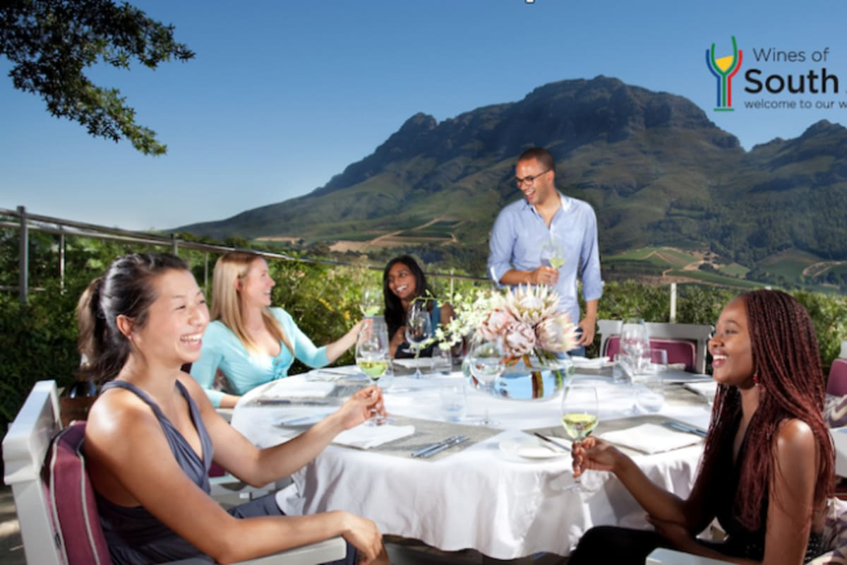 Explore South African Wine Up Close