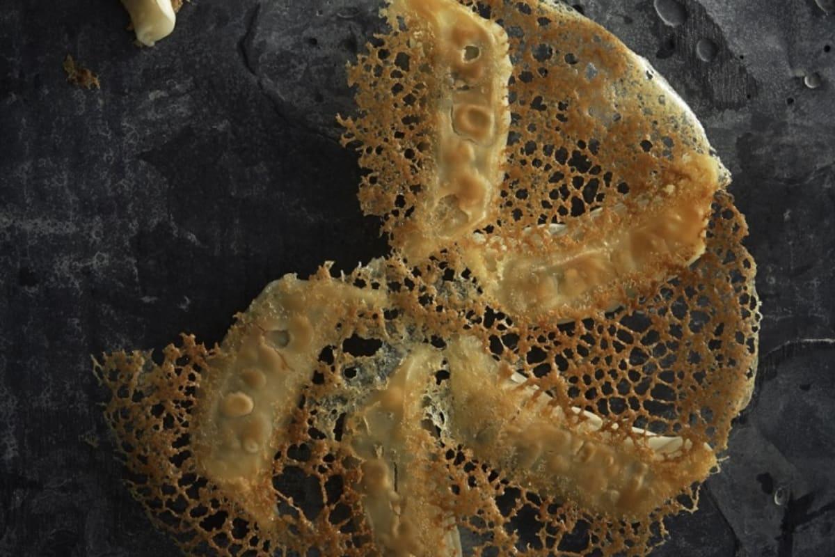 Recipe: Potsticker Dumplings