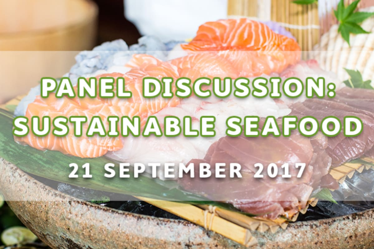 Panel Discussion: Behind the Scenes with Sustainable Seafood