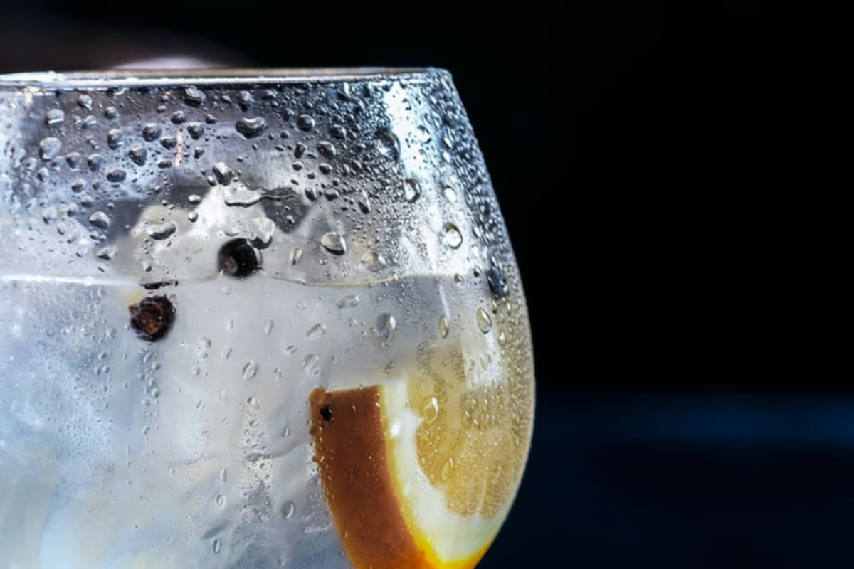 """Founders of """"Hong Kong's First Gin"""" Arrested"""