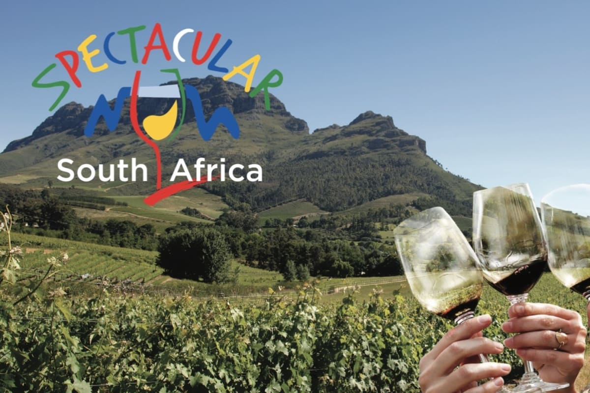 Rewriting Wine 101: May = South African Wine