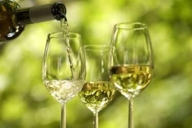 Rewriting Wine 101: Why is German Wine so Cool?