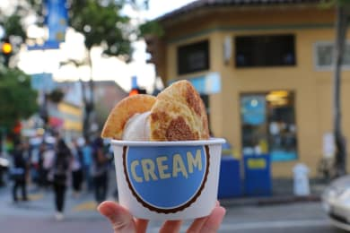 Discover The Best Ice Creams Around the Bay Area