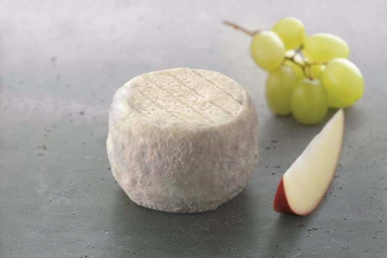 Cheese Families: Everything you Need to Know About Goat's Cheese