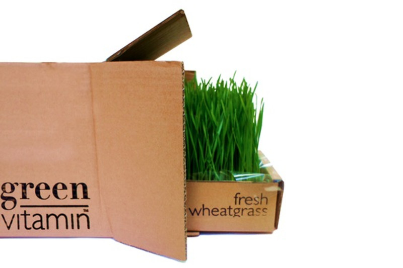 The Foodie Startup Diaries: Green Vitamin