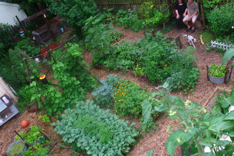 Growing 6,000 Pounds of Food on a 1/10 of an Acre in Los Angeles [video]