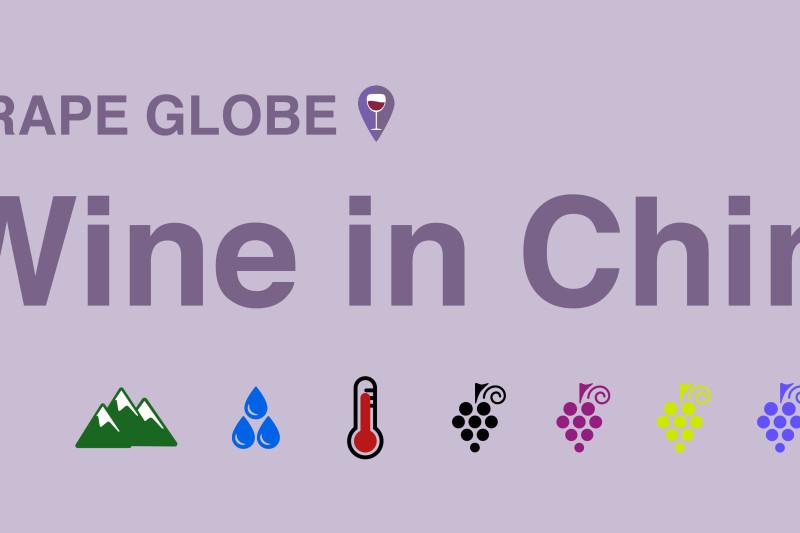 Grape Globe: Wine in China