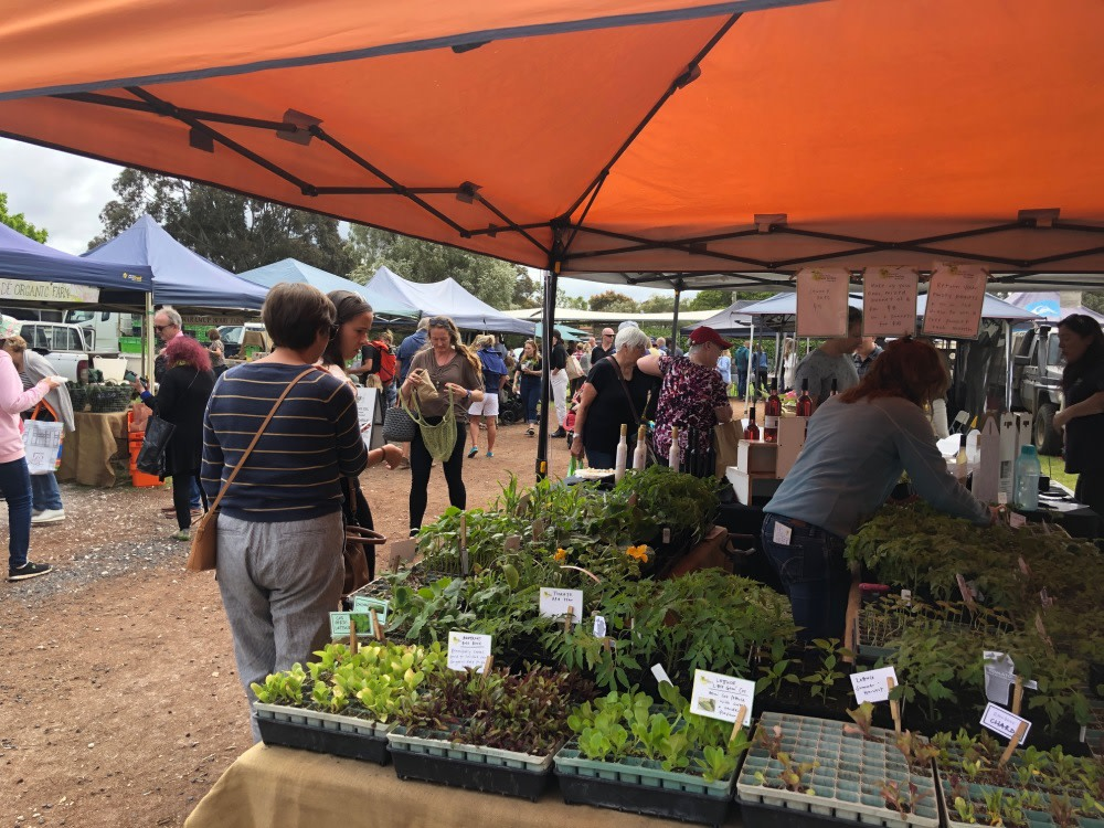 Margaret River Farmer's Market