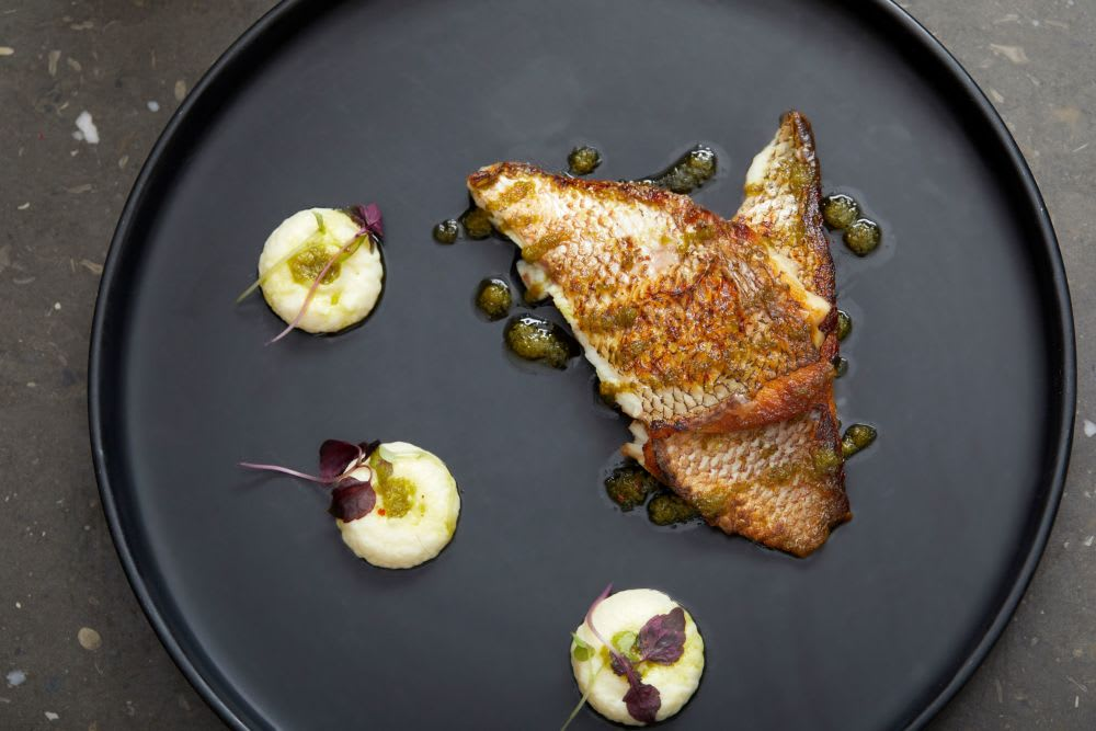 Snapper with cuttlefish, cauliflower purée and green mojo