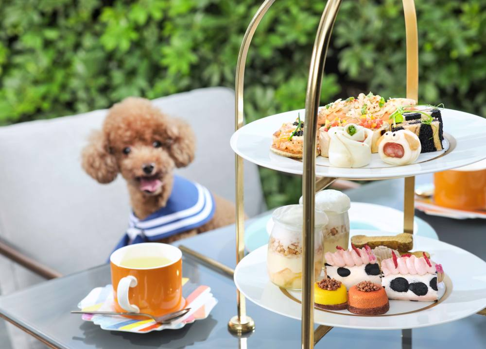 Paws for Tea at Garden Lounge at The Murray, Hong Kong