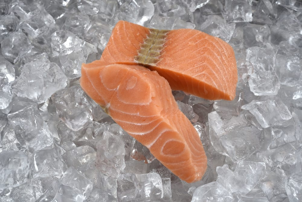 Pacific Rich Resources salmon