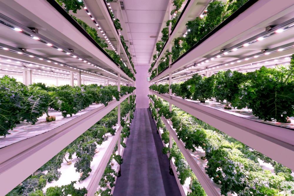 Sustenir Agriculture Hong Kong