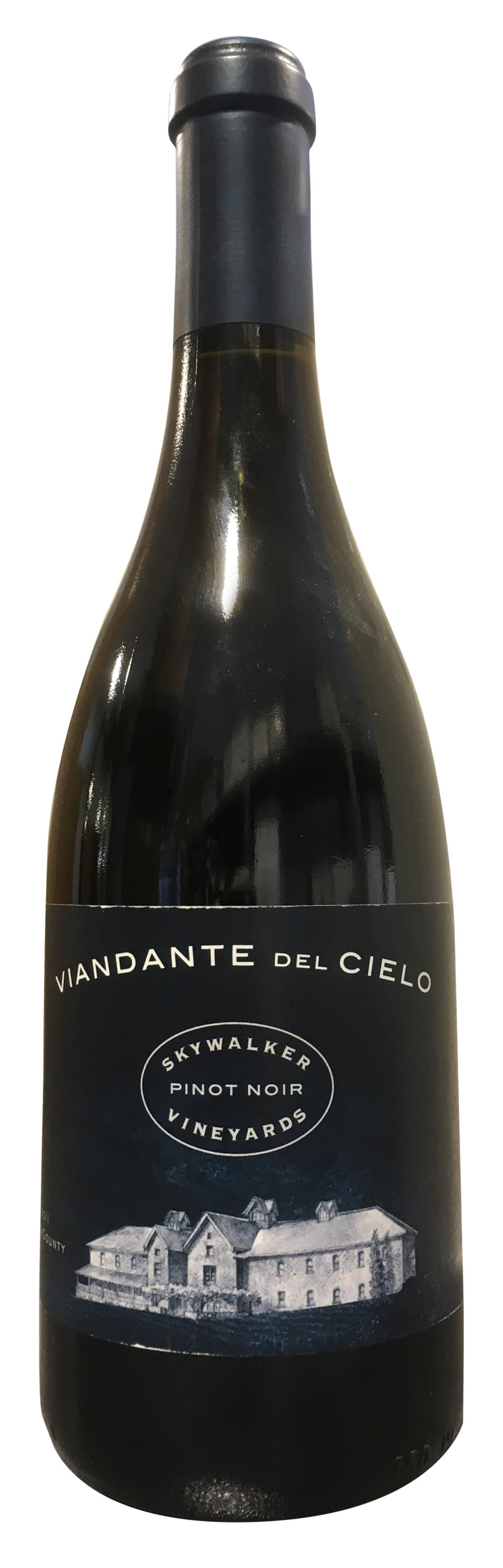 Skywalker Viandante Del Cielo Pinot Noir 2011