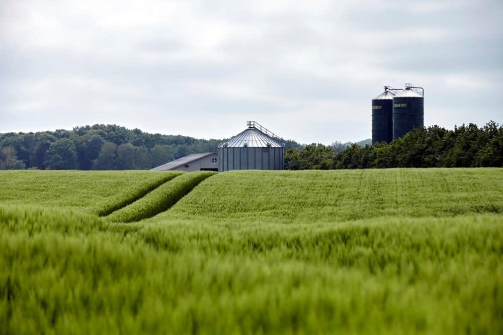 Farm in Denmark