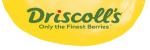 Driscoll\'s