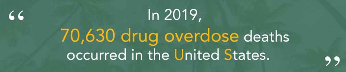 Overdose Deaths in the United States