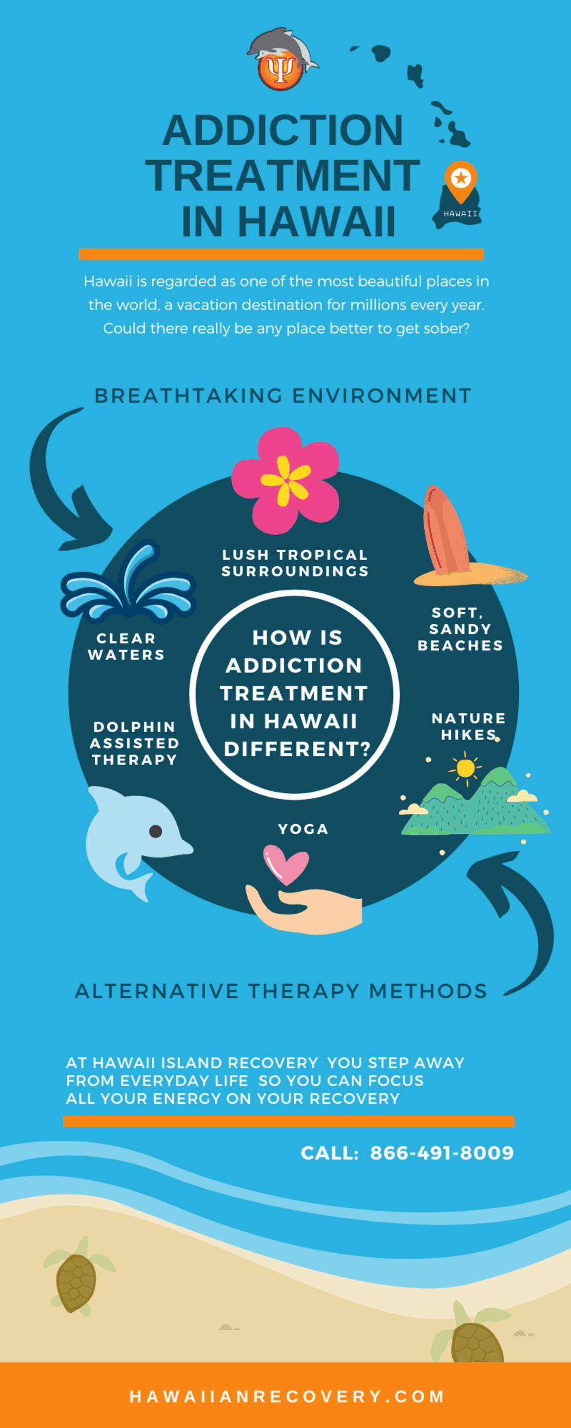 Addiction Treatment in Hawaii   Infographic