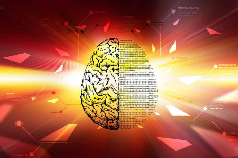 Lsd Effects on the brain