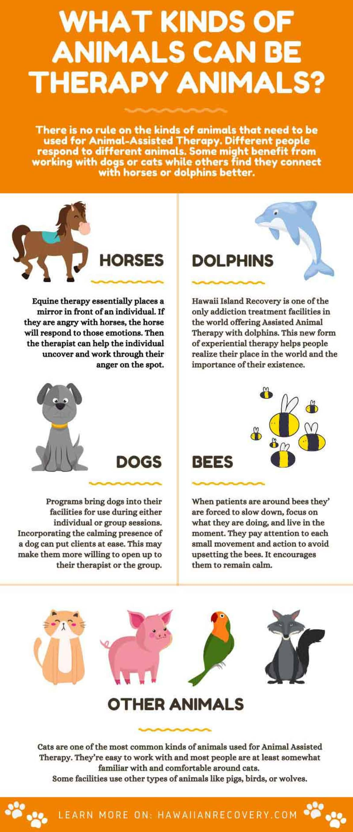 What Kinds of animals can be Therapy AnimalsA