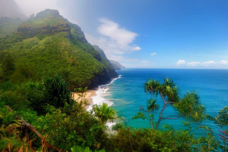 Medical Detox in Hawaii