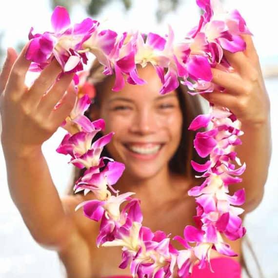 Welcome to hawaii island recovery