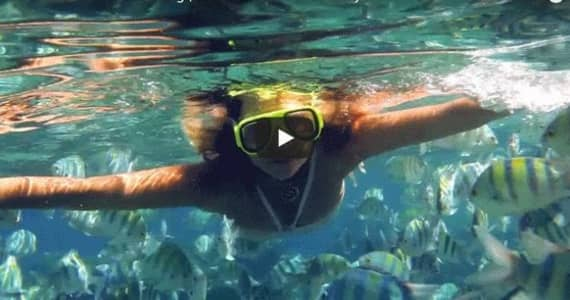 Everyone was relaxed | Hawaii Island Recovery