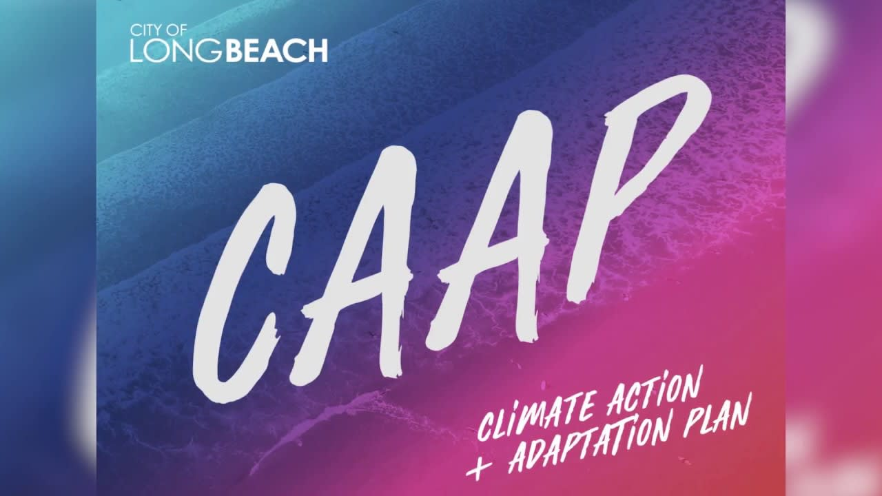 Climate Action and Adaptation Plan Logo