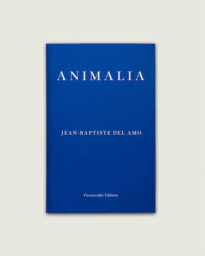 Image result for Jean-Baptiste Del Amo, Animalia, Fitzcarraldo