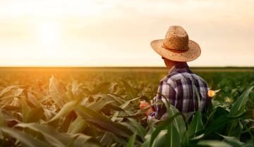 farmers choosing