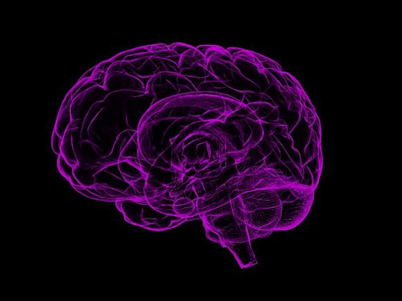 Het brein, foto: Pixabay_groot