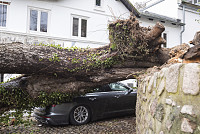 Fierce Storm Causes Deaths, Damage...