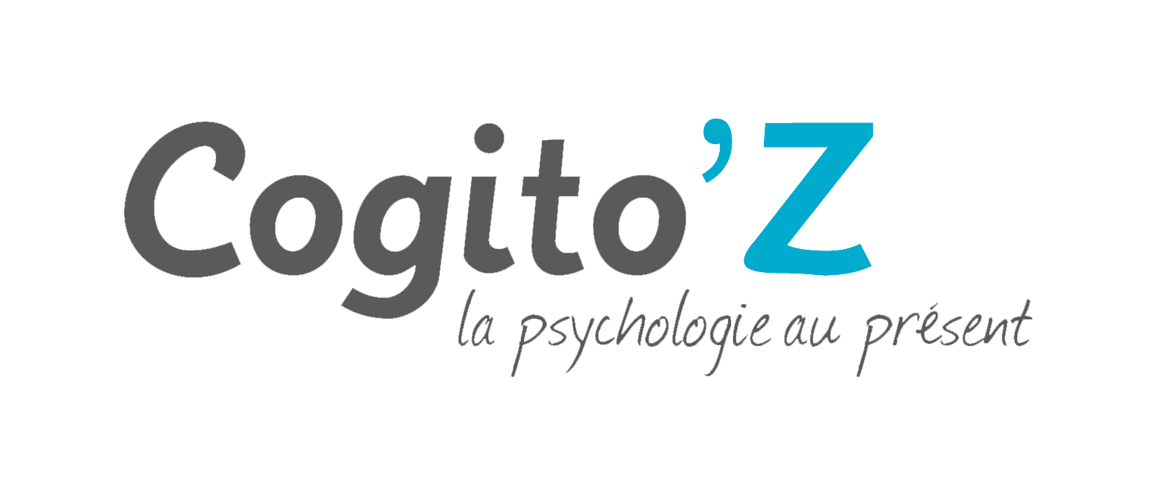 Cogito'Z-photos-videos-le-guide-de-la-formation