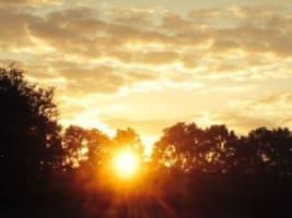 sun image