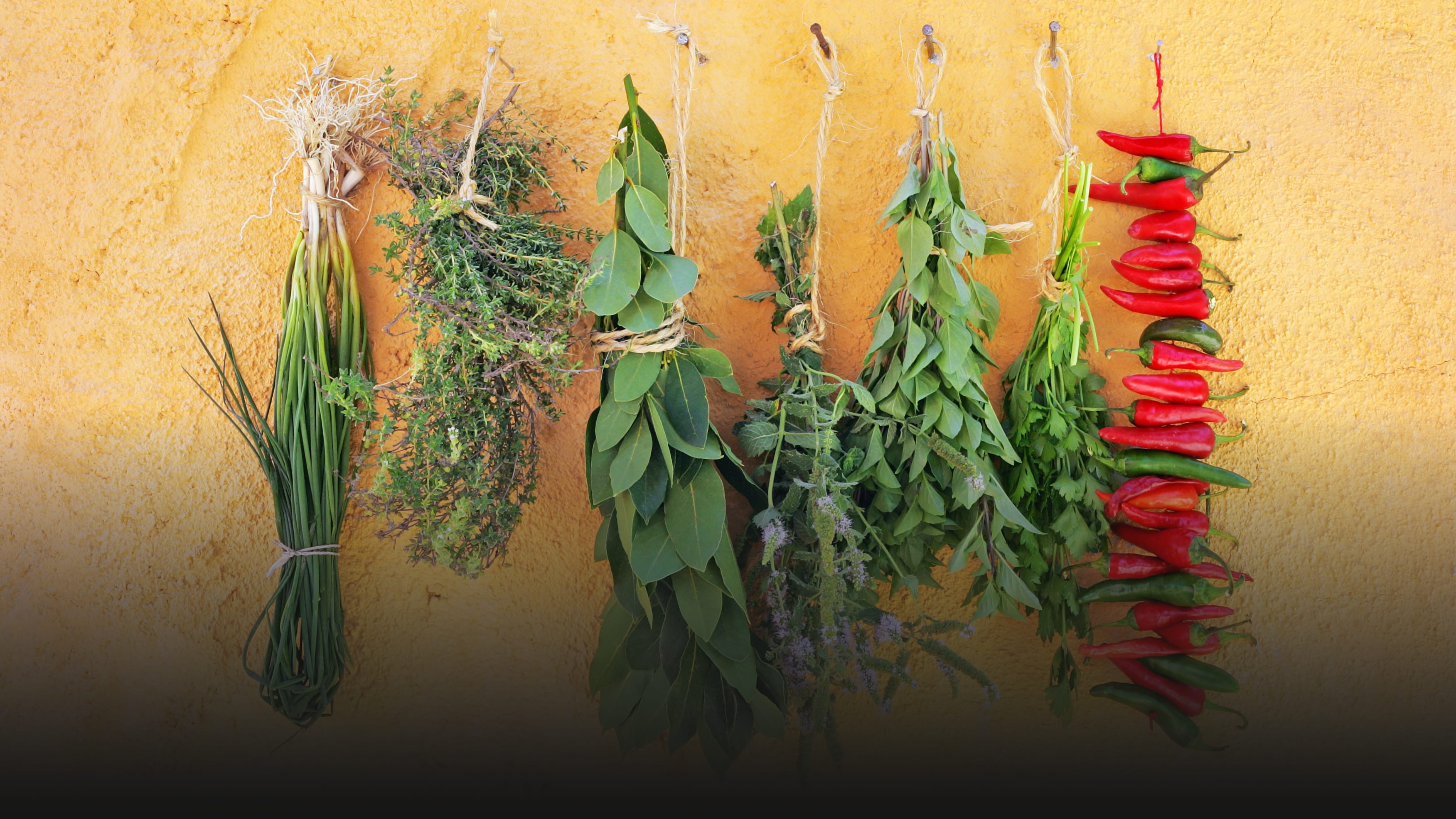 Dry Your Own Herbs and Spices (It's Better Than the Jarred Stuff)
