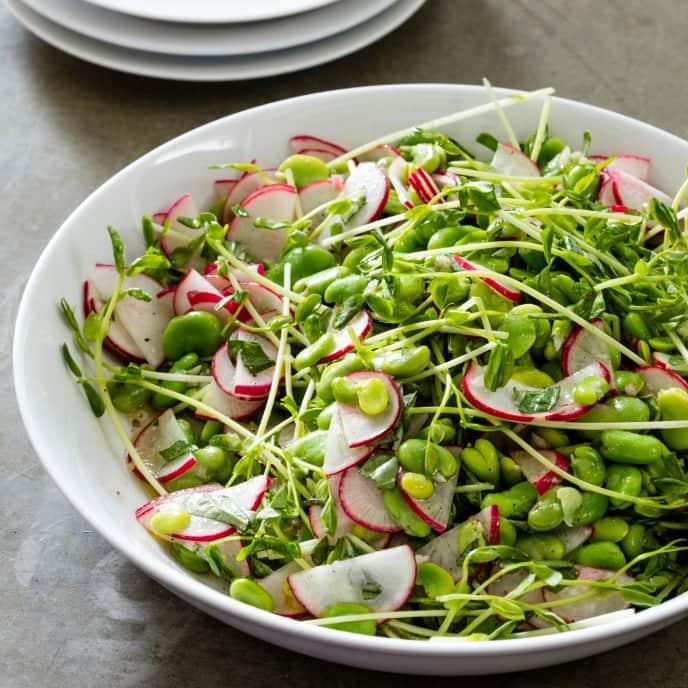 Fava Bean and Radish Salad
