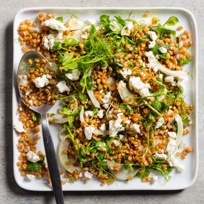 Spelt Salad with Pickled Fennel, Pea Greens, and Mint