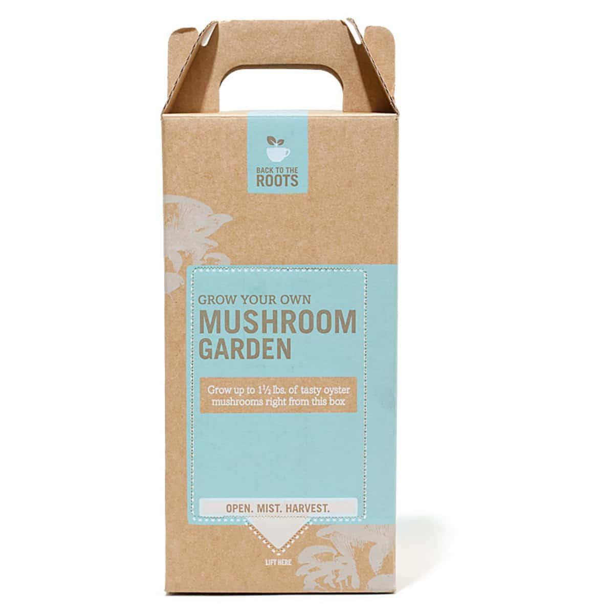The Best Mushroom Growing Kit | Cook's Illustrated