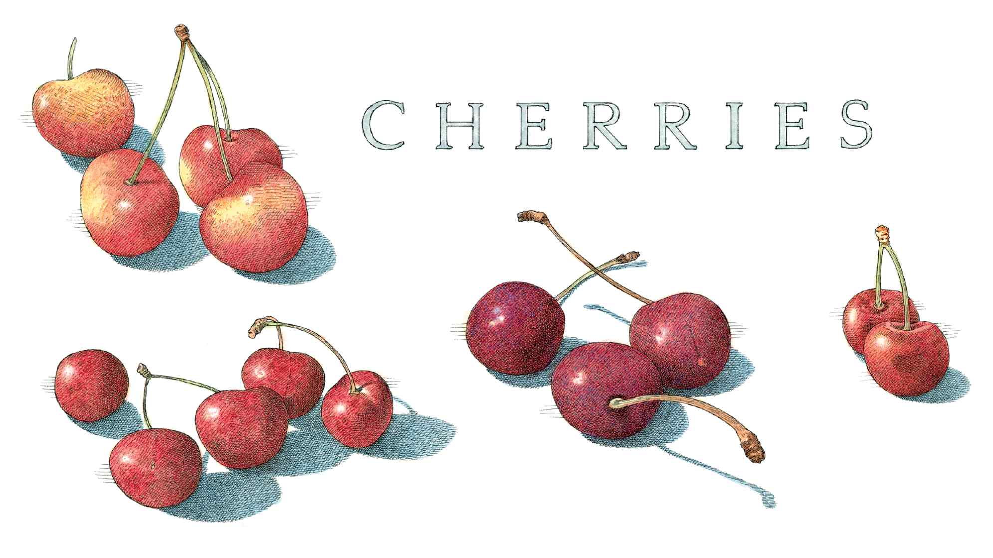 Image result for pitting a cherry with a straw and empty bottle