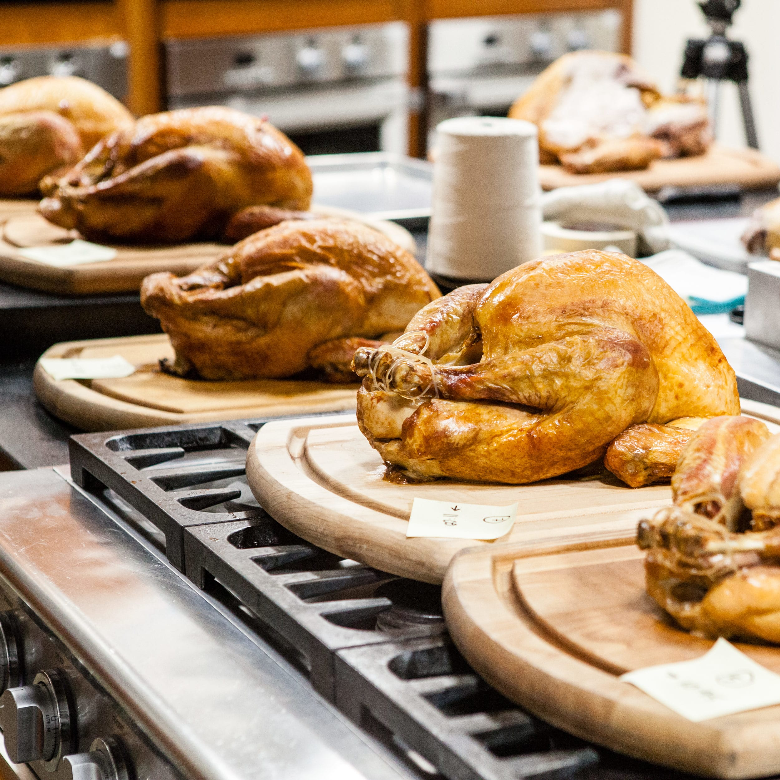 Everything You Need To Know To Make The Perfect Thanksgiving Turkey