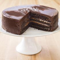 Old Fashioned Chocolate Layer Cake Cook S Illustrated