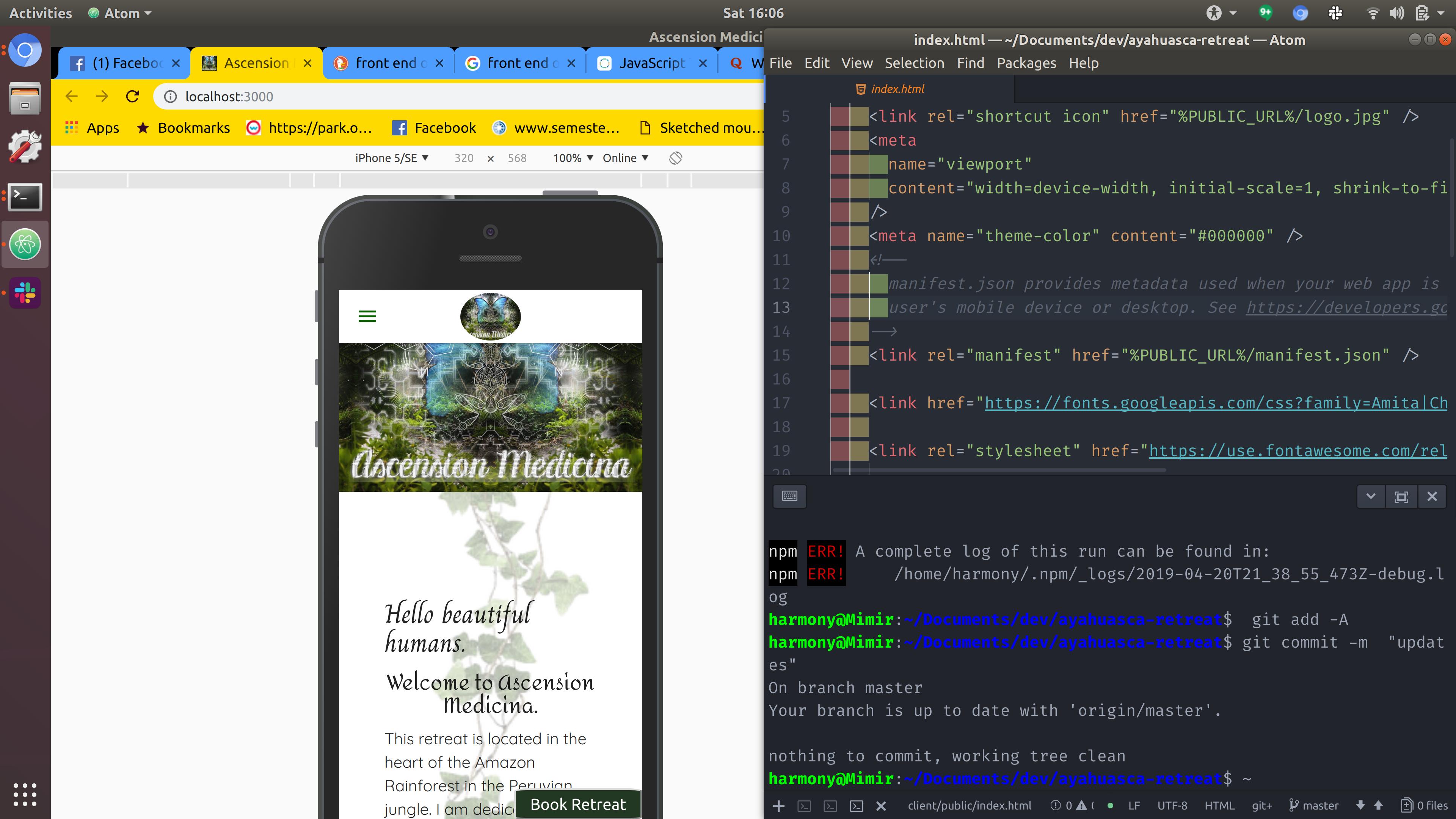 website in chrome developer tools