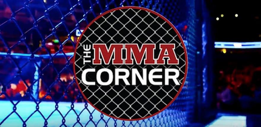 mma-corner-fight-cage
