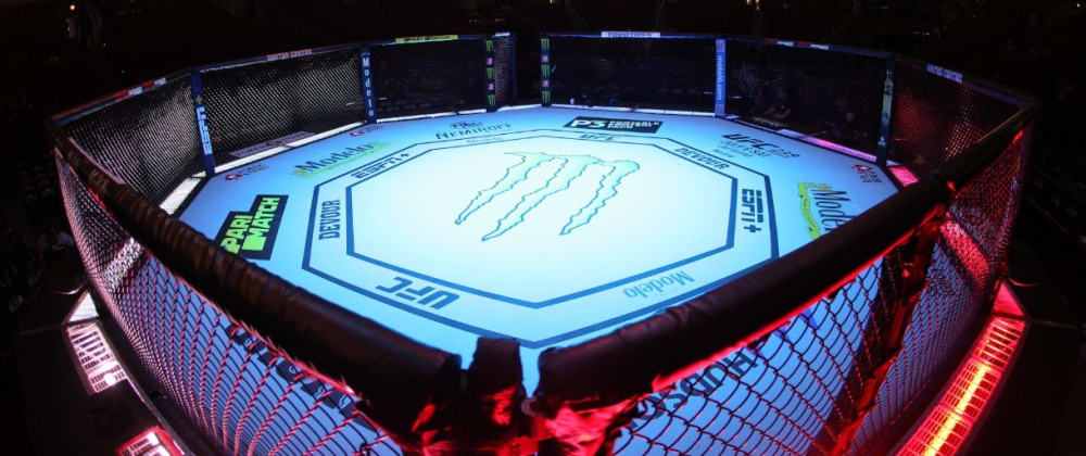 Cover image for A beginner's guide to MMA and the UFC