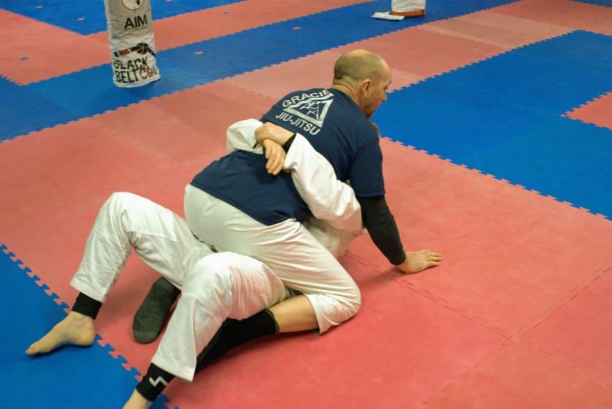Gracie Combative moves